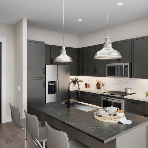 modern kitchen with stainless steel appliances - Premium Luxury Apartment Features in Houston